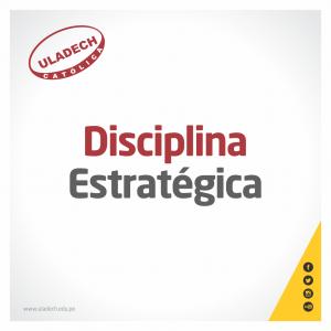 Disciplina estrategica - 3010